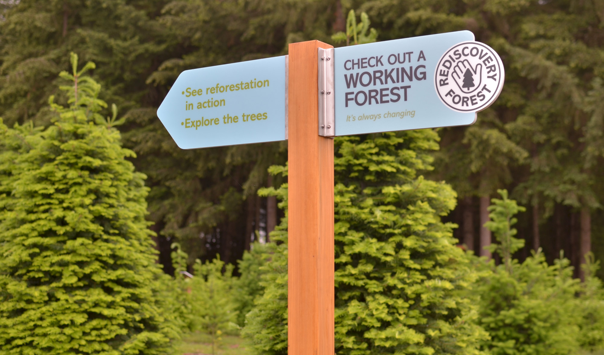 OFRI Rediscovery Forest Signs